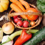 美味しくダイエット! 野菜をたくさん摂れる調理方法まとめ